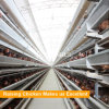 Tianrui Factory Supply Automatic 4 Tiers Layer Chicken Cage System