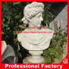 David Head Statue Marble Bust Sculpture for Home Decoration
