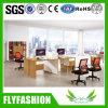 Modern Design Office Furniture Partition Staff Desk (OD-29)