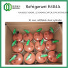 Refrigerant R404A 800g in 1L Non-Refillable Steel Cylinder