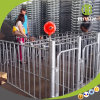 Different Kinds of Gestation Stall Farrowing Crate Made by Deba Brother