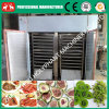 Fully Stainless Steel Hot Air Tray Coconut Chips Dryer Machine