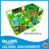 SGS Certified Indoor Playground System (QL-3071C)