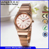 Fashion Alloy OEM/ODM Stainless Steel Quartz Woman Watch (Wy-104A)