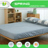 100% Waterproof Hypoallergenic Bed Bugs Proof Premium Mattress Protector