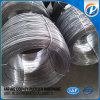 5g-21g All Sizes Iron Q195 Common Iron Wire Nails From Anping China