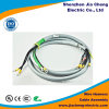 Customized Molex Terminal and Housing Auto Wire