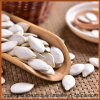 Good Quality Snow White Pumpkin Seeds for Sale