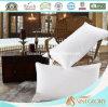 Saint Glory Professional Three Chamber Pillow
