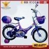 "12""Kids Bike with Auxiliary Wheel"