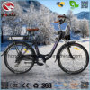 Alloy Frame 250W Cheap Electric City Road Bike