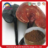Mprove Immune System Broken Ganoderma Lucidum Spore Powder