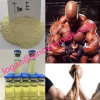 Parabola Yellow Tren E Muscle Growth Steroids Trenbolone Enanthate