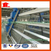 Hot Sale in Africa Poultry Chicken Cage for Poultry Farm