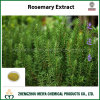 Natural Antioxidant Ingredient Rosemary Extract Powder with Rosmarinic Acid and Carnosic Acid