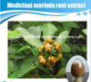 Natural Medicinal Indian Mulberry Root Extract