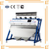 Most Popular Corn CCD Color Sorter