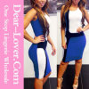 Sexy Chic Color Block Panel Front Bodycon Dress