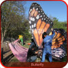 Theme Park High Simulation Animated Insect Model