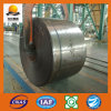 Cold Rolled Stainless Steel Coil/Sheet (Sm034)