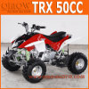 50cc - 110cc Kids Mini Quad Bike