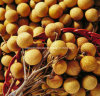 Made in China-Euphoria Longan Extract/Dimocarpus Longan Extract/ Longan Extract