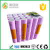 48V 36 Volt Rechargeable Lithium Battery Pack for Hoverbord Segway/Electric Scooter/ Bike