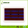 Panel Full Spectrum SMD LED 300W 450W 600W Hydroponics LED Grow Light Kits for Plant