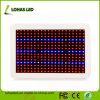 Panel Full Spectrum SMD LED 300W 450W 600W Hydroponics LED Grow Light Kits for Plant