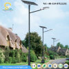 50W LED Solar Road Lights, with CREE Chip, 8 Metres Pole