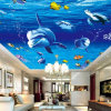 New Design Popular Top Quality Decoration Stretch Ceiling Film Printing