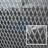 High Quality (30 Warranty Years) Expanded Metal Mesh for Decoration