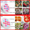 Best Seller 12W 24W E27 LED Grow Lights for Home Plants