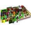 Fascinating and Design Indoor Playground