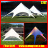 Outdoor Advertising Display Star Canopy Tent for Sale