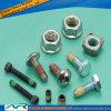 DIN En ASTM Stainless Steel Fastener Bolt Screw Nut Bud