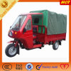 Hot Sale Adults Three Wheeler Rickshaw with Driver Cabin