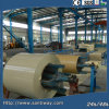 PPGI Galvanized Steel Coil Plate-Dx51z275