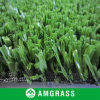Synthetic Grass for Sports Field 20mm Height (ANT-20D)