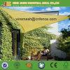 Home Sunshade Net/ Outdoor Shade Sail