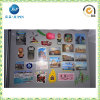 Fridge Magnet, Eco-Friendly, Suitable for Travel and Home Decoration (JP-FM007)