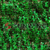 Artificial Hedge Fence Wall Boxwood Fence