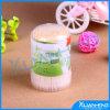 Bamboo Toothpicks in Plastic Bottle for Bulk Sale