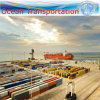 Container Shipping Agent to North America (sea freight)
