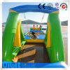 Cocowater Design Inflatable Swing for Aqua LG8029