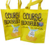 Promotional Laminating Shopping Bag with Customer′s Design Printing (YT-195)