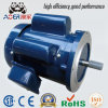 Low Speed 110V High Torque Induction AC Single Phase Electric Motor