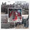 Kl Series Feed Pellet Mill Spares Die and Roller