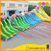 Beautiful Cheap Price Inflatable Amusement Park Equipment Mushroom and Fruit Inflatable Slide (AQ1178)