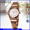 Fashion Casual Alloy OEM/ODM Quartz Woman Wrist Watch (Wy-104B)